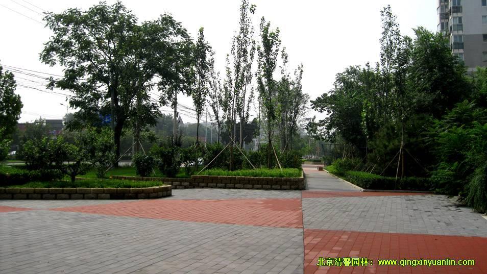 兰德华庭绿化工程