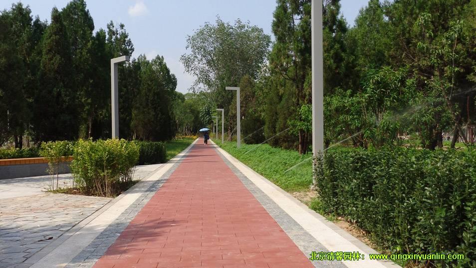 四环路绿化工程