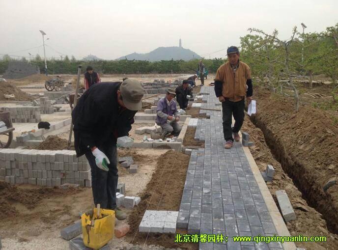 整铺粘合层,铺设透水砖