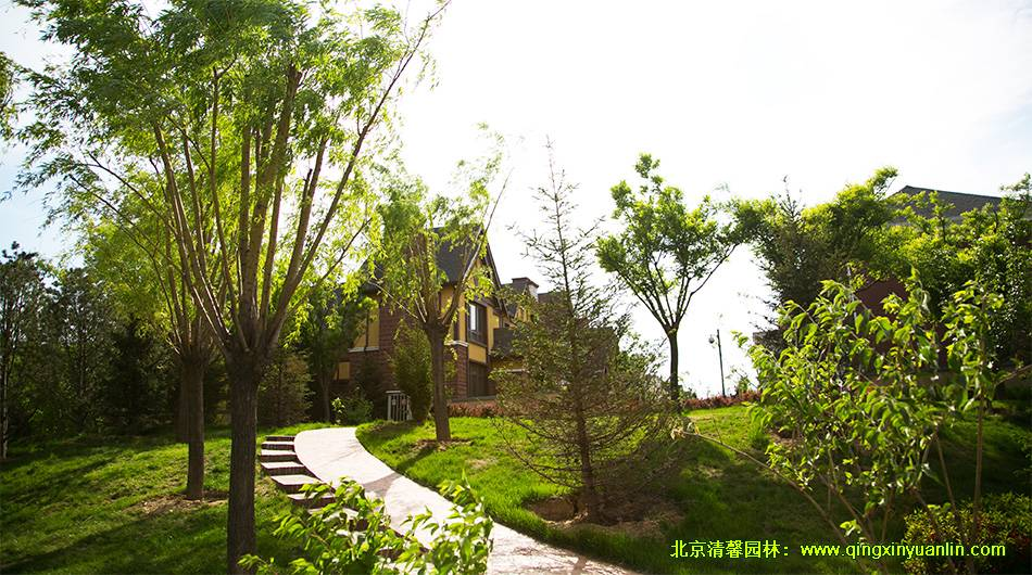 北京枫树家园二期项目园林景观绿化工程