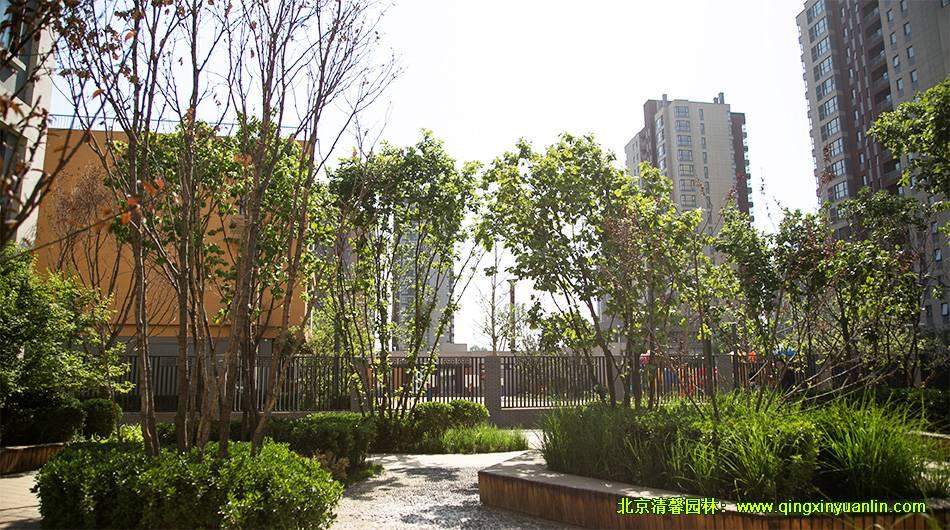 北京中粮万科长阳项目3号地北京小学园林软硬景工程