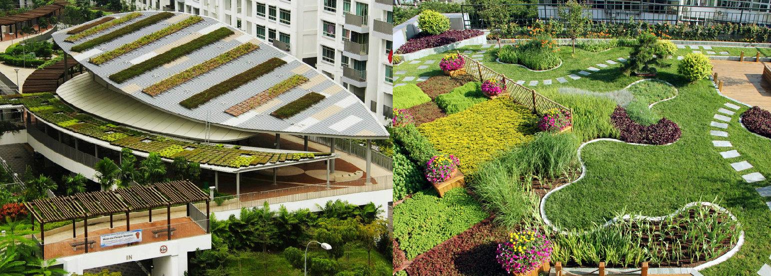 浅论现代化城市建设中的园林绿化建设