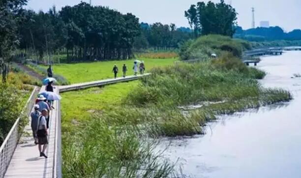 自然原型驳岸景观设计