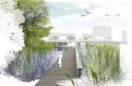 滨水景观植物配置方案