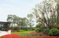 住宅景观设计赏析:广州星河山海湾二期