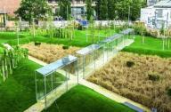 千禧公园景观设计赏析