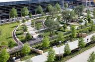 园艺疗法的概念及适用人群
