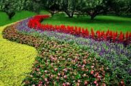 园艺疗法的休闲农业园中的应用