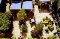 园艺疗法研究前景与展望