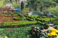 童话农庄景观设计:香草王国农园